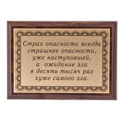 """Плакетка """"Страх опасности..."""" ПА-240"""