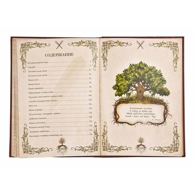 Семейная летопись, кожаная обложка (в подарочной коробке) СЛ-15
